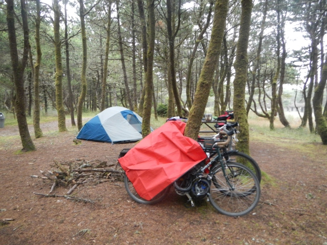 Camp at Nehalem Bay SP