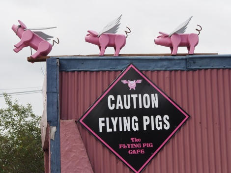 Pigs can fly.