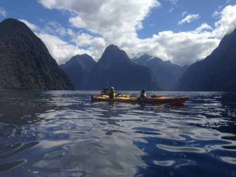 Kayaking in the Milford Sound -