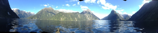 Milford sound by kayak.