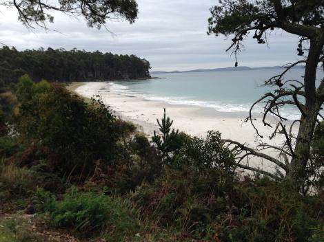Beautiful white sand beaches of Bruny Island.