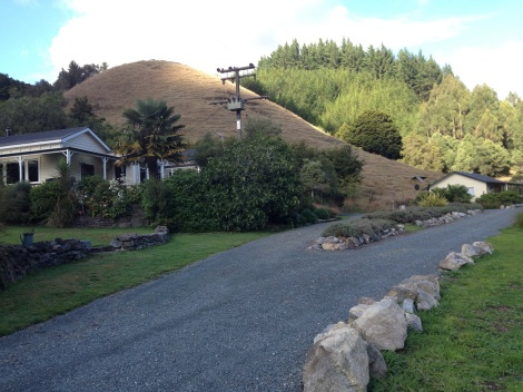 Mahoe Hills Alpaca Farms and studio