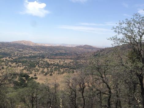 The Yokohl Valley from the ridgeline.